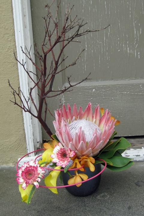 Uncategorized floral design by jacqueline ahne 39 s blog for King protea flower arrangements