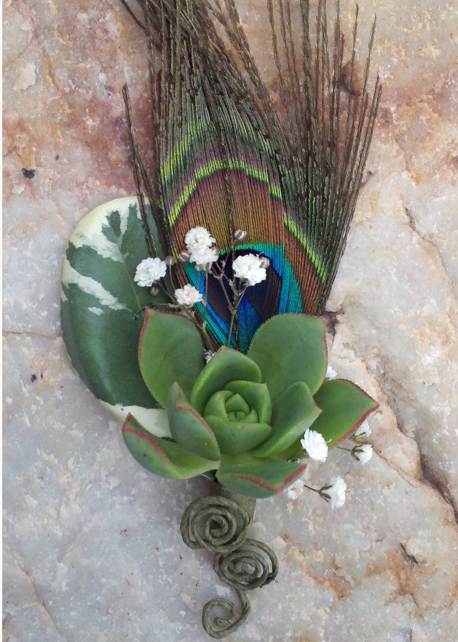 Peacock Boutonnieres Floral Design By Jacqueline Ahne S Blog