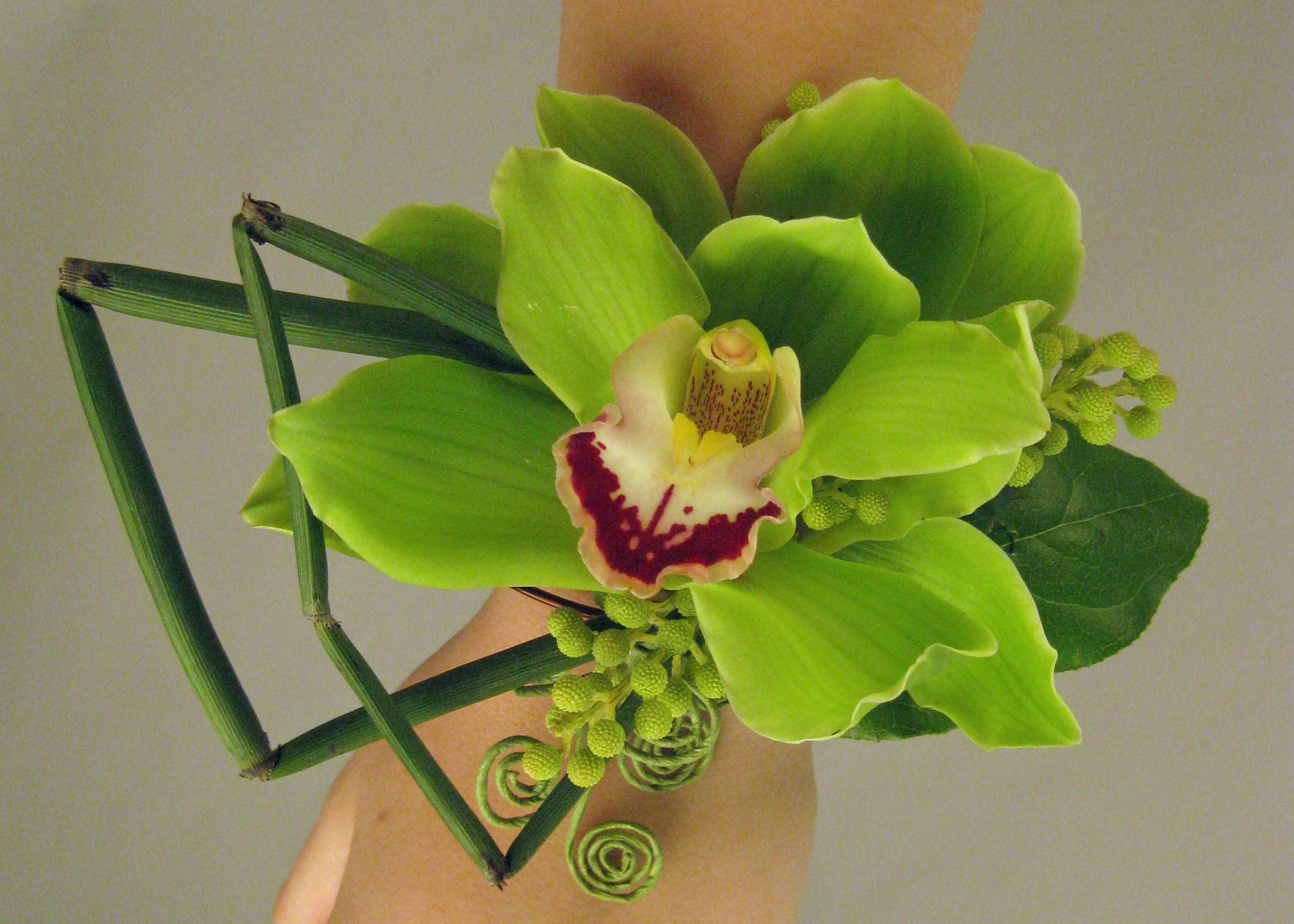 Cymbidium Orchid Wrist Corsages: Floral Design By Jacqueline Ahne's Blog