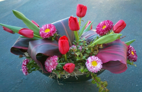 Compact Arrangement with tulips, aster and ti leaves- Floral Design By Jacqueline Ahne